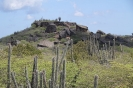 Twizy Tours Roadrunner-Bonaire_5