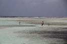 Impressionen Bonaire_1
